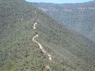 Billy Goat Bluff Track, Victorian High Country