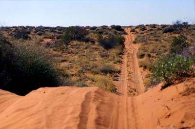French Line in the Simpson Desert